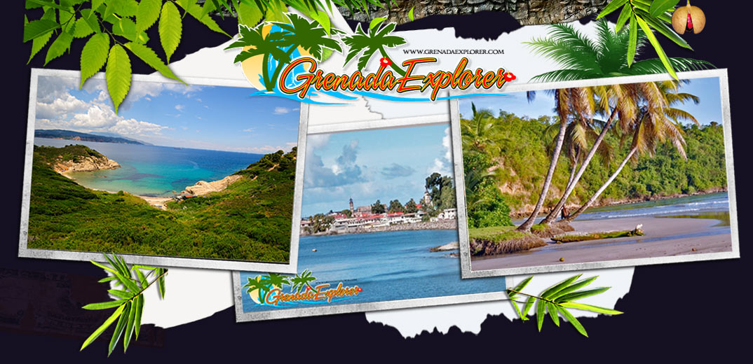 Grenada Explorer Travel Guide