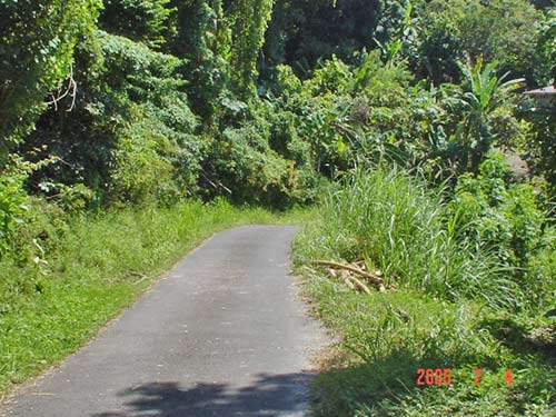 Lot of Land For Sale in St. Andrew's Grenada