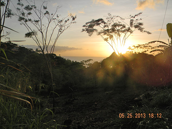 Land For Sale in Grenada