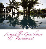 Armadillo Guesthouse